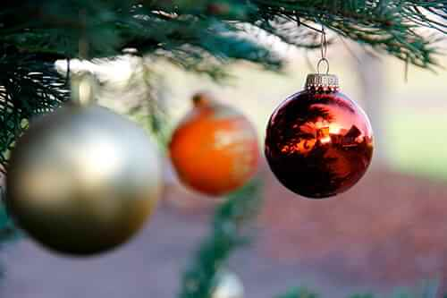 viterma Vorweihnachtsfeier