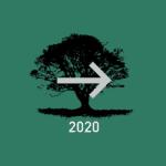 klimaneutrales Unternehmen 2020